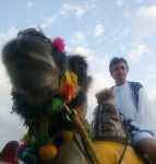 Richard-Hammond-on-camel.jpg