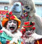Clowns-camel.jpg